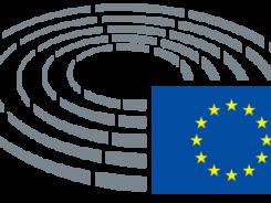Parliamint European